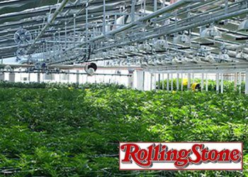 will-rescheduling-marijuana-mean-pot-industry