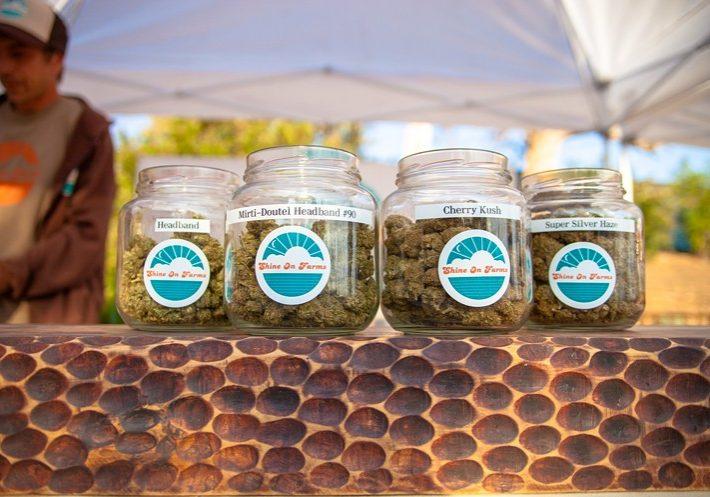 marijuana-local-politics-election-march-los-angeles